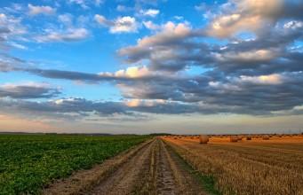kupno ziemi rolnej, sprzedaż ziemii rolnej